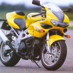 Special: Nelis 1000 R, Suzuki TL 1000 Roadster of the Netherlands