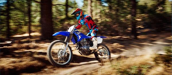 Yamaha 2015 TTR-230