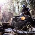 2017 Kawasaki Brute Force 750 4x4i EPS Action