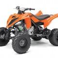 2017 Yamaha Raptor 700 Sports ATV