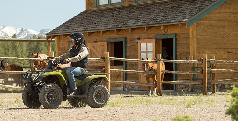2017 Honda FourTrax Recon ATV