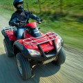 2017 FourTrax Rincon Honda Utility Quad Bike