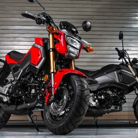 Honda archives bikes catalog for 2018 honda grom top speed