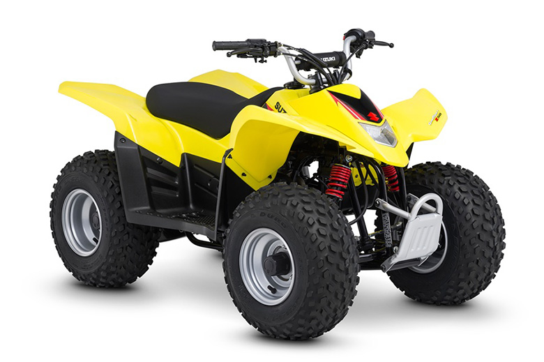 Suzuki Quadsport Price