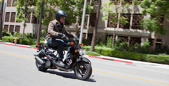 Used Honda Ruckus >> Ruckus 2018 Honda Scooter - Review Price Specs