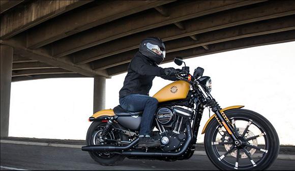 2019 Iron 883 Harley-Davidson Sportster Bike