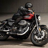 Harley-Davidson 2019 Roadster Sportster Specs