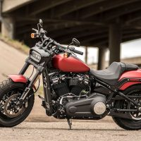 2019 Fat Bob Harley-Davidson Softail