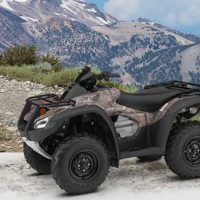 2019 Honda FourTrax Rincon Utility Quad Bike