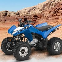 Honda 2019 TRX250X Sports ATV
