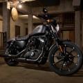 2016 Harley Davidson Iron 883 front view