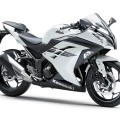 Kawasaki 2017 Ninja 300 ABS Sports Bike