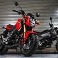 2017 Honda Grom Urban Motorcycle