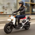 Ruckus 2018 Honda Scooter