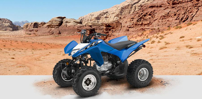 Honda 2019 TRX250X Sports ATV