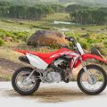 2019 CRF110F Honda Trail Dirt Bike