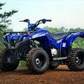 Grizzly 90 2019 Yamaha Utility ATV