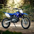 Yamaha 2019 TT-R125LE Dirt Motorcycle