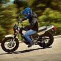 Yamaha 2019 TW200 Dual Sports Motorcycle
