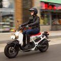 Ruckus 2019 Honda Scooter