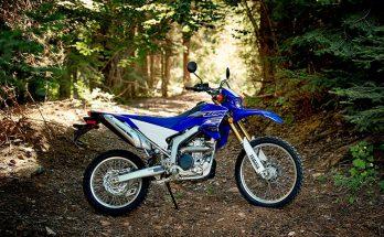 Yamaha WR250R 2019 Dual Bike