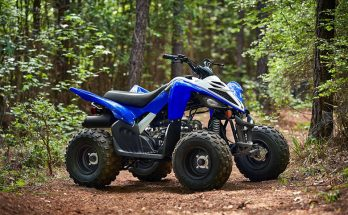 Raptor 90 2020 Sports Quad Bike
