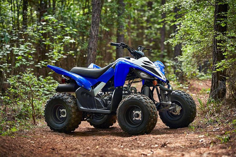 Raptor 90 2020 Sports Quad Bike