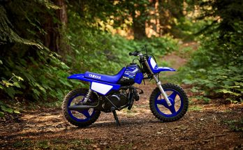 2020 PW50 Yamaha Trail Dirt Bike