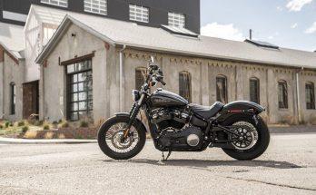 2020 Street Bob Harley-Davidson Cruisers