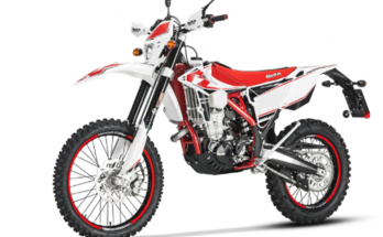Beta 2019 EVO 300 SS Dirt Motorcycle