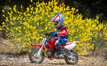 Honda 2020 CRF50F Mini Dirt Motorcycle