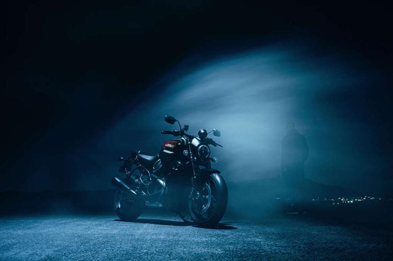 Harley-Davidson 2021 Bronx 1250 Street Fighter Motorcycle